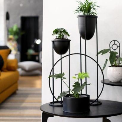 black tall planter